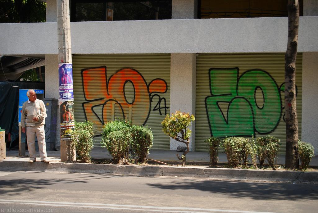 Zombra Graffiti Distrito Federal.