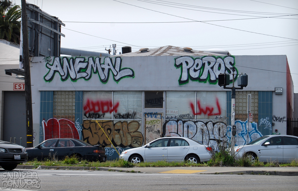 Peros Anemal Jeans Oakland Graffiti. 