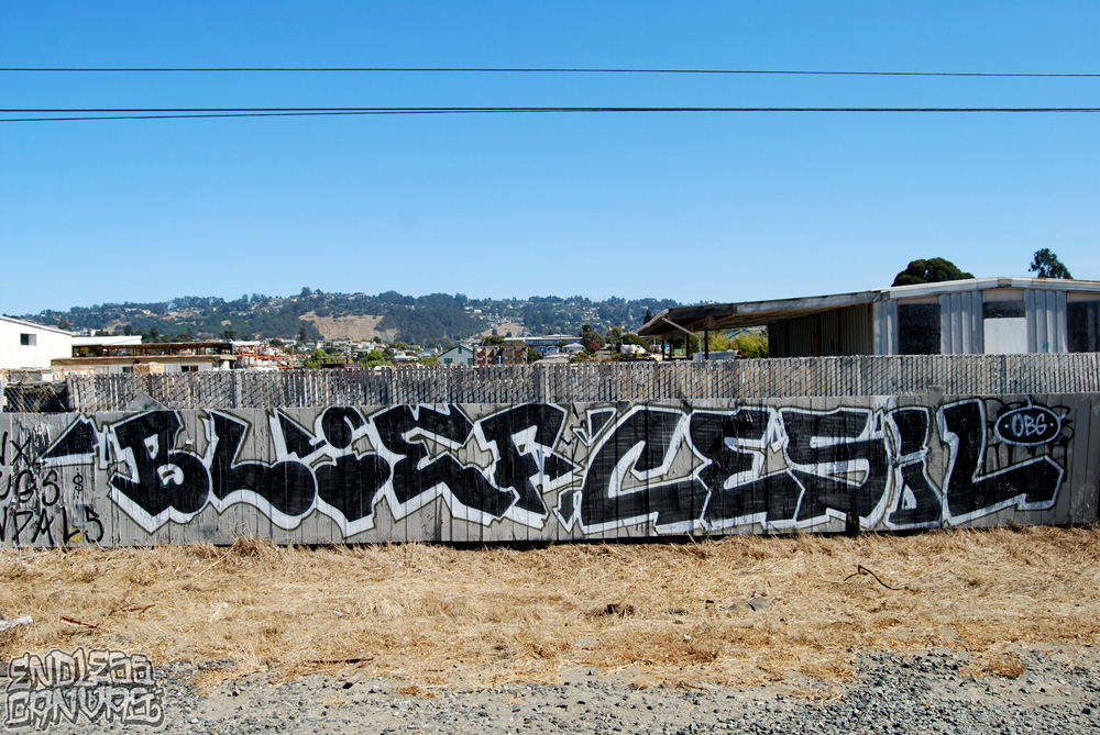 Blief Cesil Graffiti East Bay CA. 