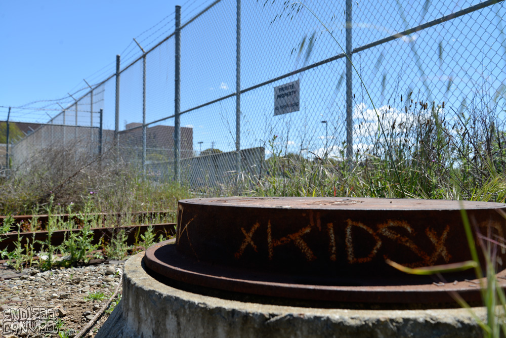 KIDS DAC RIP - East Bay CA.