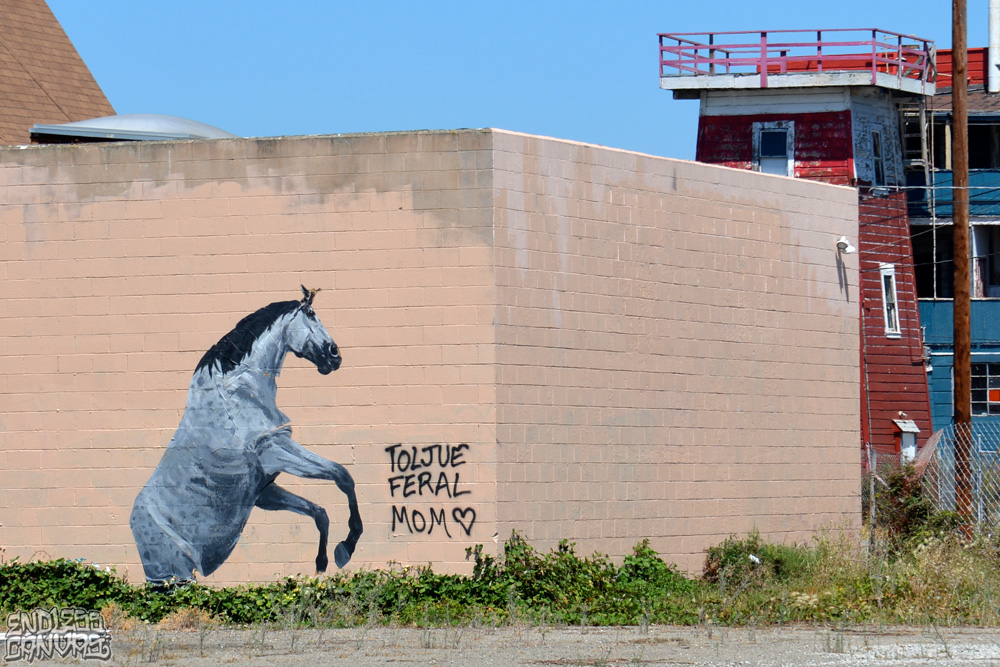 HORSEWheatPaste-OaklandCA