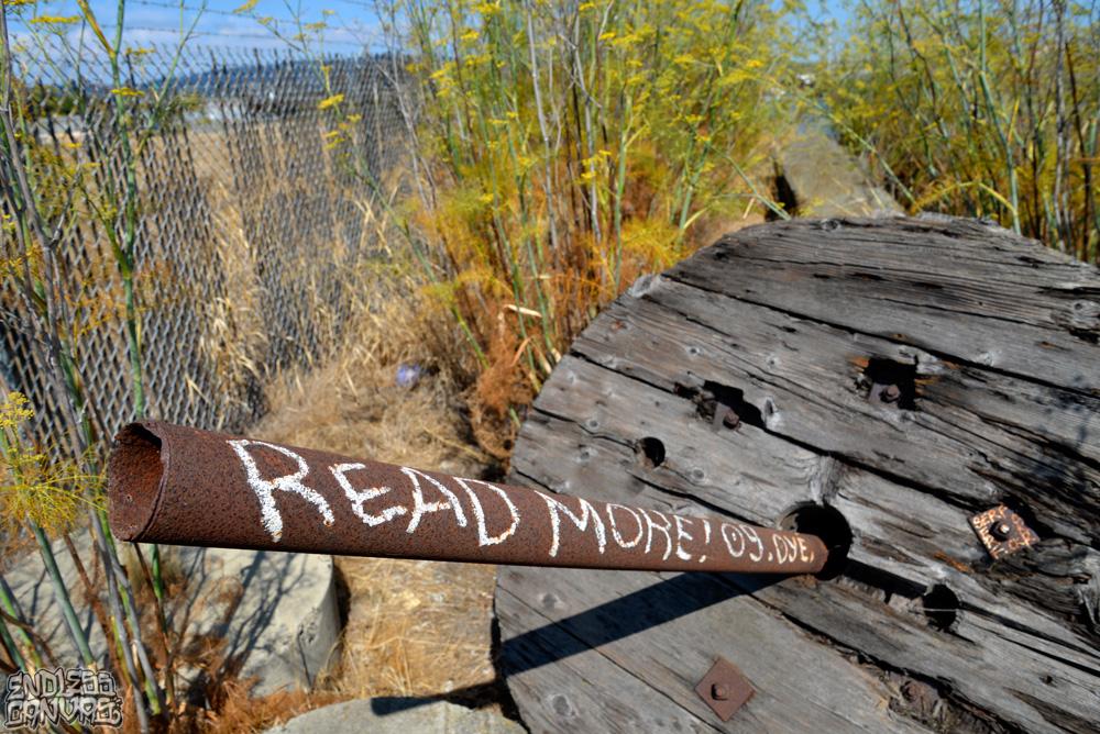 READERHandstyle-OaklandCA