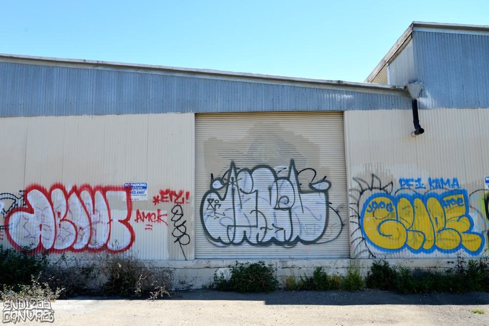 ABOUT AEBOL GRIEF - East Bay CA.