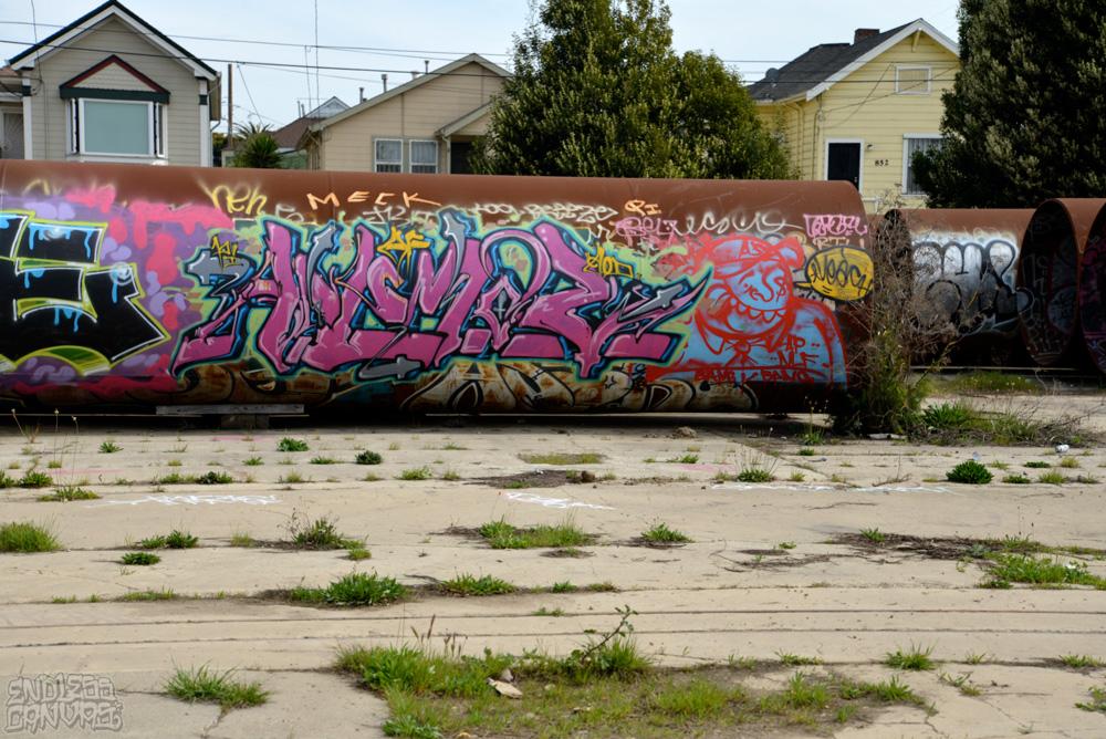 ANEMAL LEACH - East Bay CA.