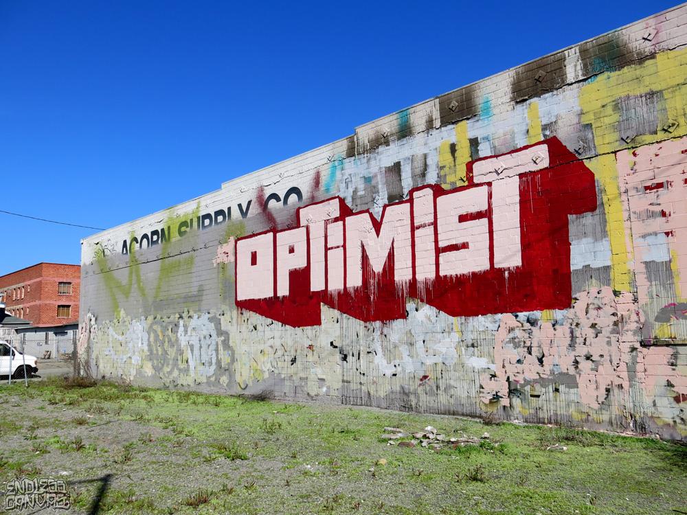 ENDLESS_OptimistRoller