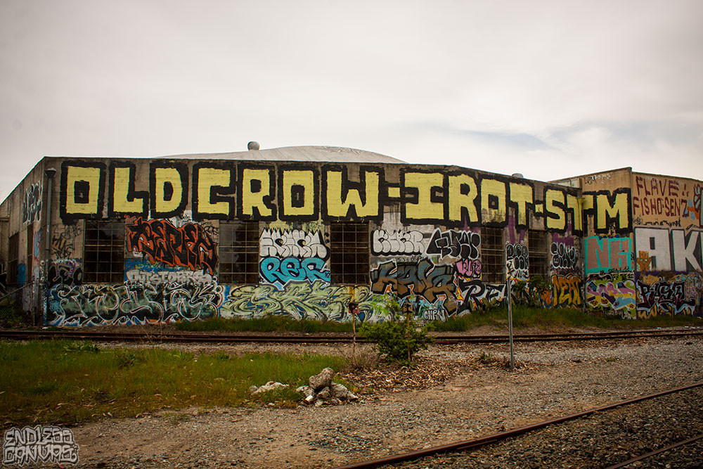 OLDCROW_1_05-02-2015_LoRes