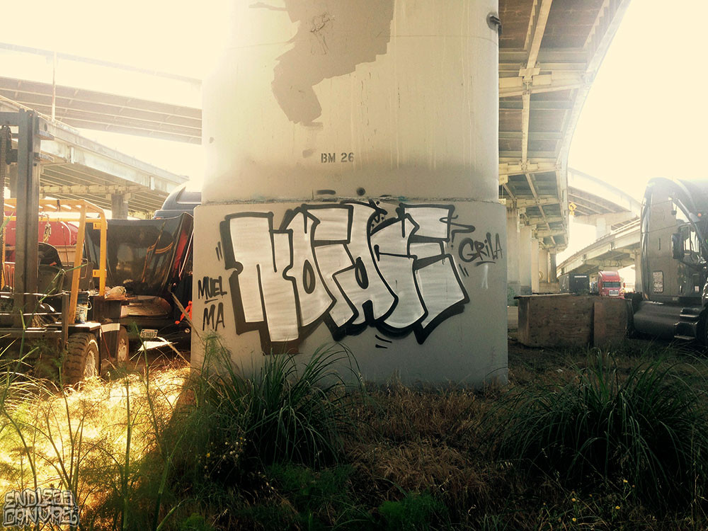 NOFACE_1_06-20-2015_LoRes