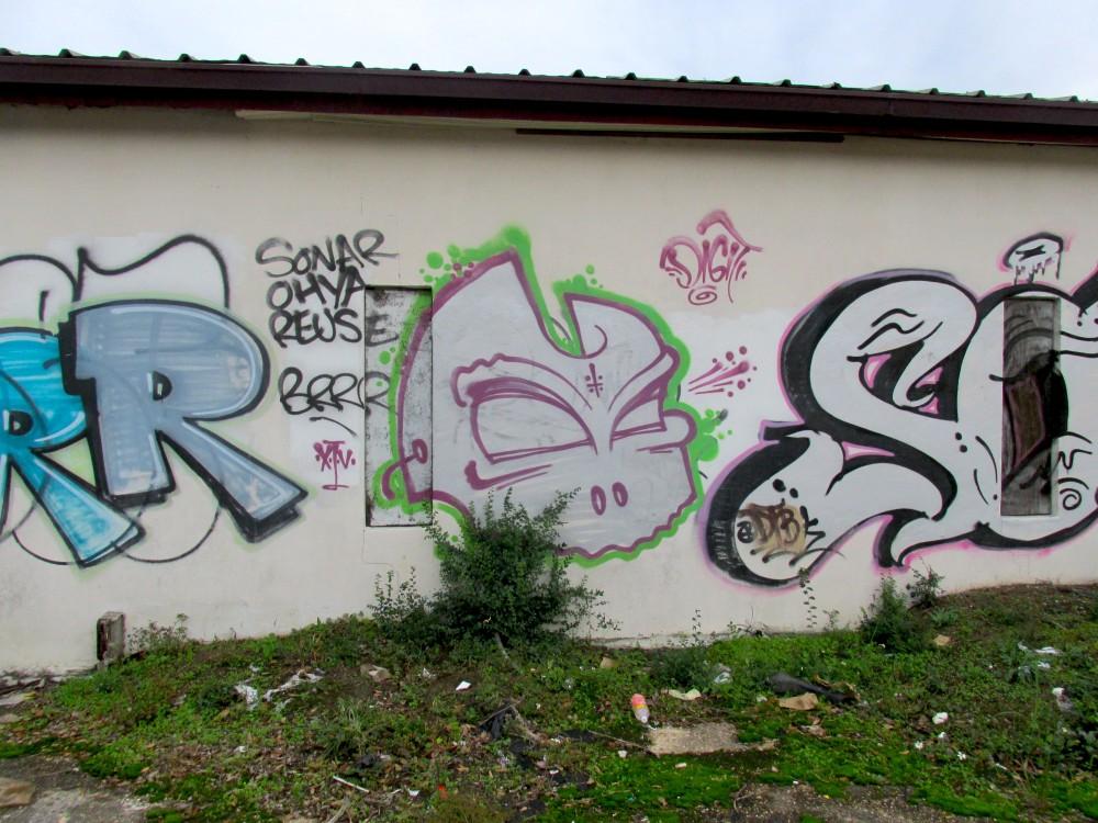 IMG_0900ec