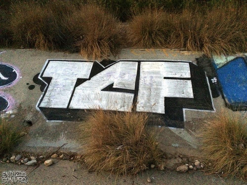 TCF Graffiti San Diego CA.