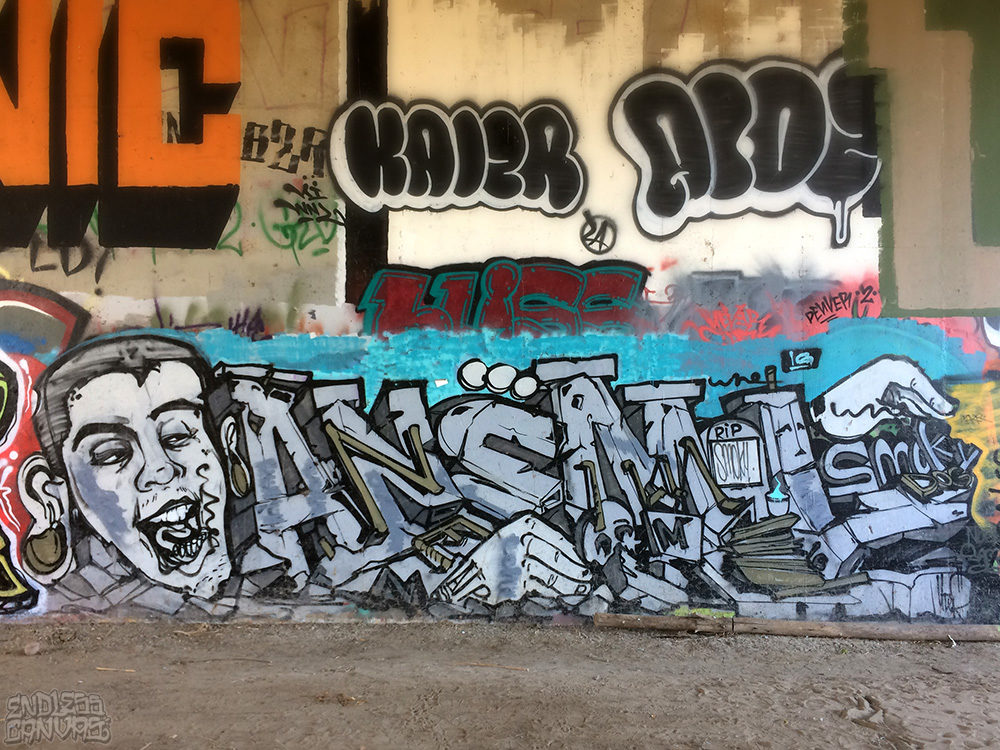 RIP Anemal Forever Graffiti by Uter San Diego CA.